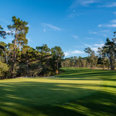 Poppy Hills Named Course of the Year Finalist
